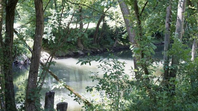 diesem Flüßchen stand das Wasser 2013 bis zur Grasnabe