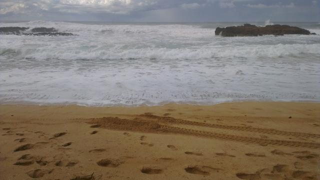 Atlantic Cost Oualida Marocco (7)