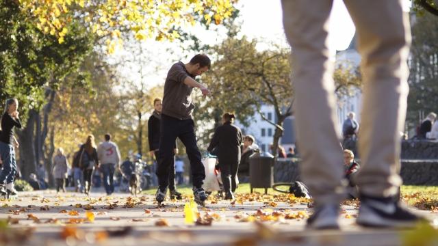 Skater Altstadt Köln (4)